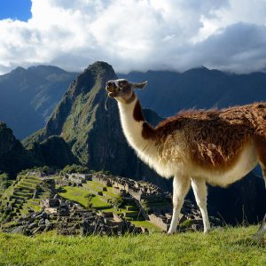Tour-Machu-Picchu-y-Cusco-6-Días-y-5-Noches-5