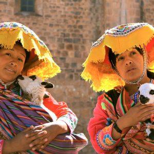 city-tour-cusco-llama